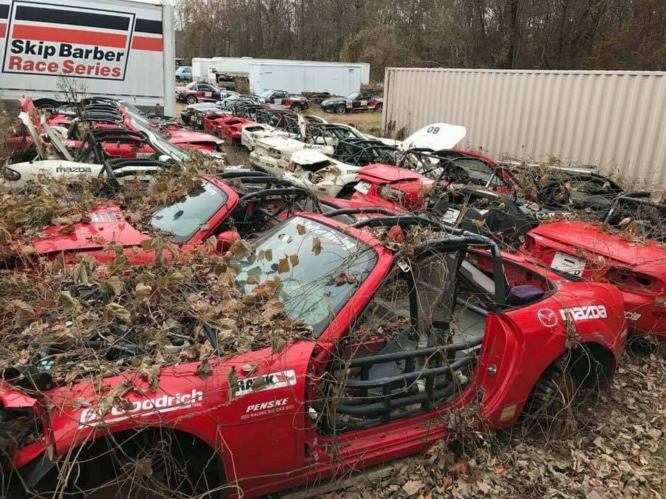 Seems a waste...-18922151_1271470502951859_6514307259298450842_n-jpg