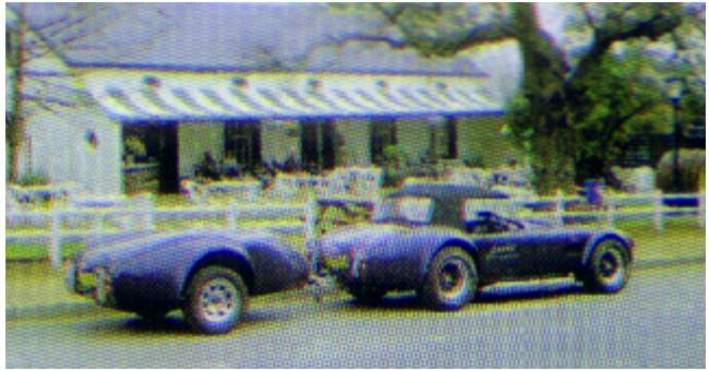 Bizarre idea?-19956-cobra02-jpg