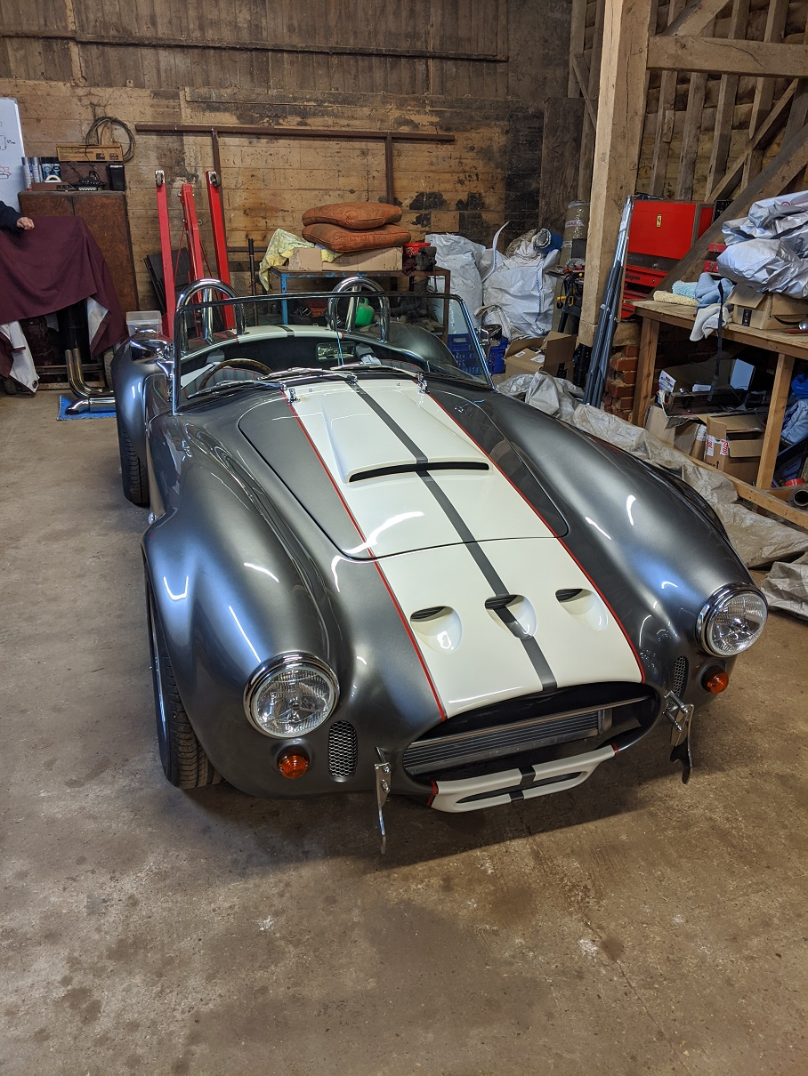 Cobra 1.jpg