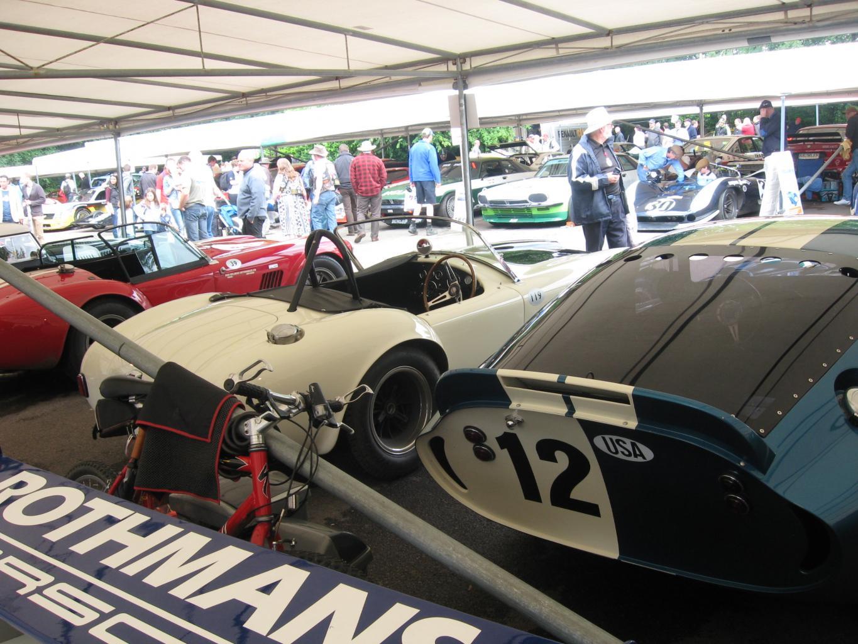 Festival of Speed-Goodwood UK-img_1060-jpg