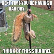 Bad day-th-1-jpeg